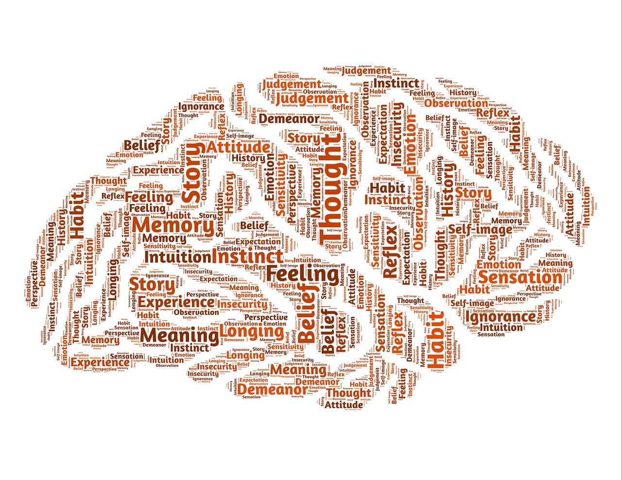 brain-544403_1280