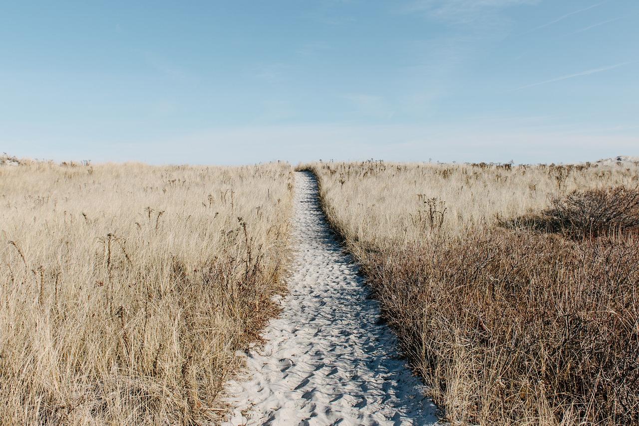 prairie-1246633_1280